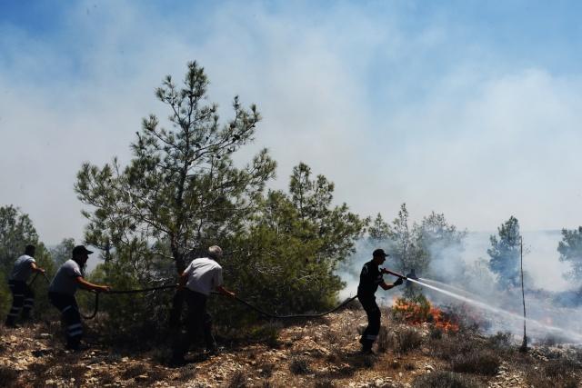 Alayköy'deki çöplük alanda başlayan yangın kısa sürede ormanlık alana sıçradı, ekiplerin uzun uğraşları sonucu kontrol altına alındı