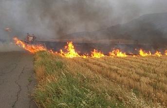 Mesarya'da 250 dönümlük alanda yangın