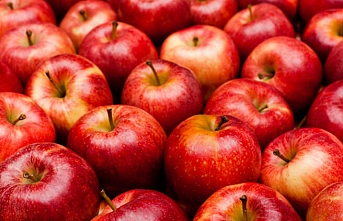 İthal elma ile yerli maydanoz ve marulda zehir