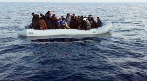 636 kaçak kurtarıldı