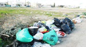 LTB 60 ton çöp topladı