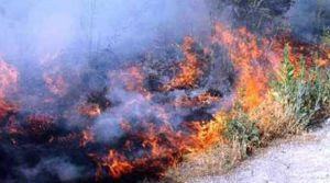 Sıcaklar arttı yangınlar başladı