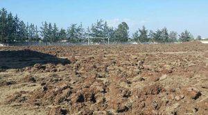 Yalova sahaları yeniliyor