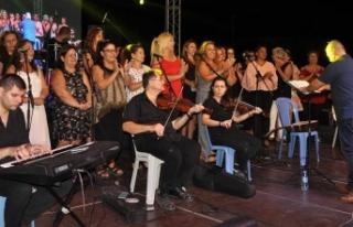 Beyarmudu Belediyesi tarafından düzenlenen festival...