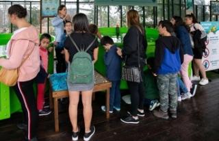 Yurtta kalan çocuklar Merit'te kaplumbağaları...