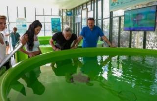 Meritta Deniz Kaplumbağaları Rehabilitasyon Merkezi'ne...