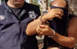 55 lira için 4 ay hapislik