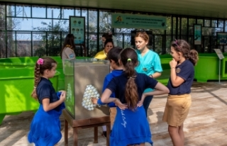 Meritta Deniz Kaplumbağaları Rehabilitasyon Merkezi,...
