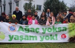 Girne Belediyesi Çocuk Meclisi üyeleri, orman yaratmak...