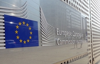 11 Milyon Euro nerelere harcanacak?