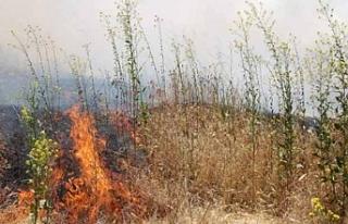 Girne'de izinsiz ateş yakan kişiye yasal işlem