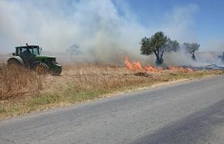 Paşaköy mandıralar bölgesi yandı