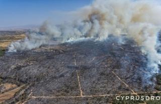 Yangınlar sonrasında geriya kalan tablo