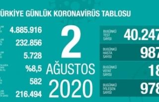 Türkiye'de her gün bin civarı yeni vaka çıkıyor