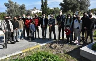 Girne Belediyesi, Karaoğlanoğlu Mezarlığı'na...