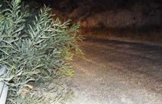 Sadrazamköy yolu tehlike saçıyor