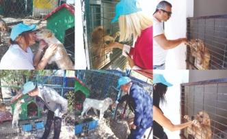 Merit Lefkoşa Hotel yönetici ve çalışanları, hayvan barınağını ziyaret etti