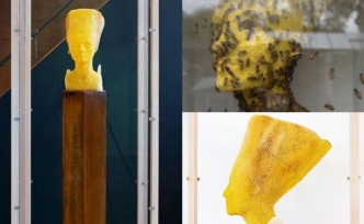 Slovak sanatçı 60 bin bal arısıyla Nefertiti büstü yaptı