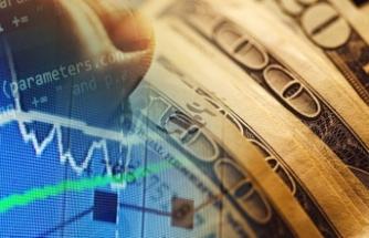Doların kaybı yüzde 6.5