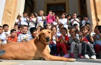 Girne Belediyesi, Beylerbeyi Anaokulu'nda Hayvan Sevgisi Farkındalık Etkinliği düzenledi
