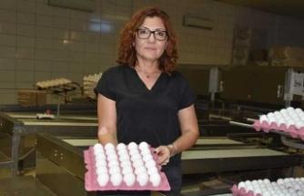 Yumurta fiyatları düşüyor