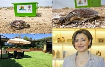 Meritta, Kaplumbağalarahayat umudu oldu