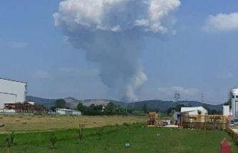 Sakarya'daki havai şişek fabrikasında yangın