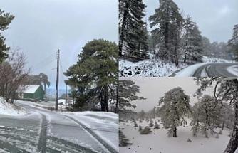 Trodos'a yılın ilk karı yağdı