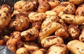 Tarım için önemli adım