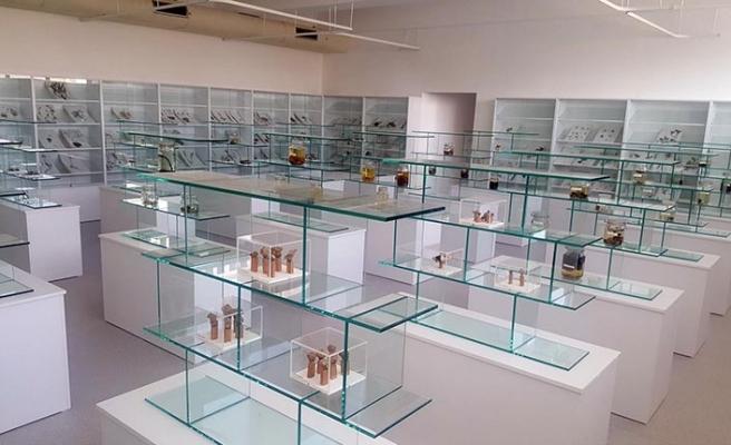 YDÜ'de Herbaryum Müzesi kuruldu