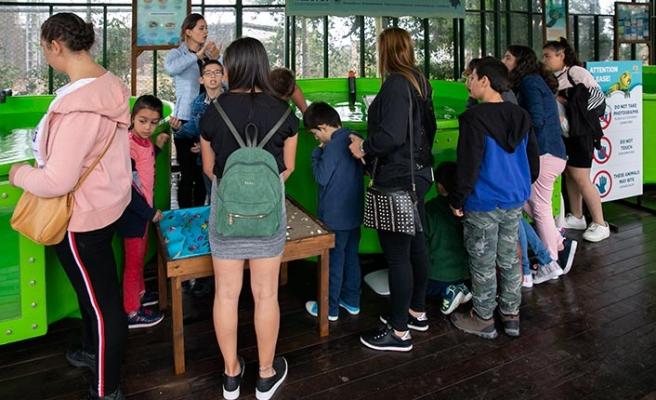 Yurtta kalan çocuklar Merit'te kaplumbağaları izleyip, çiftlikte güzel bir gün geçirdi