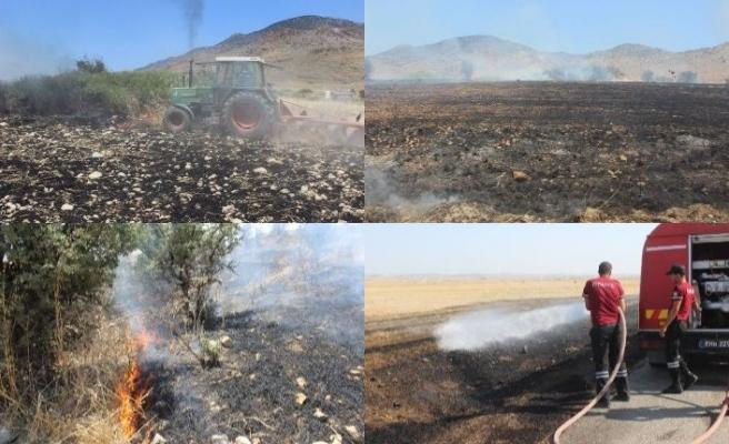 Biçilmemiş ekinler yandı