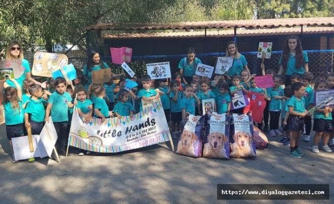 Öğrenciler Lefkoşa Hayvan Barınağı'nı ziyaret ederek mama bağışladı