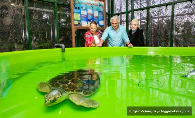 Nermin Bezmen ve eşi Tolga Savacı, yaralı deniz kaplumbağalarının tedavi gördüğü Meritta'yı ziyaret etti
