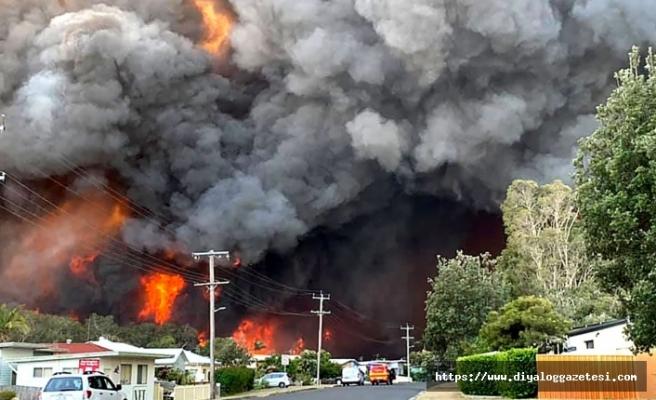 Avustralya yanıyor