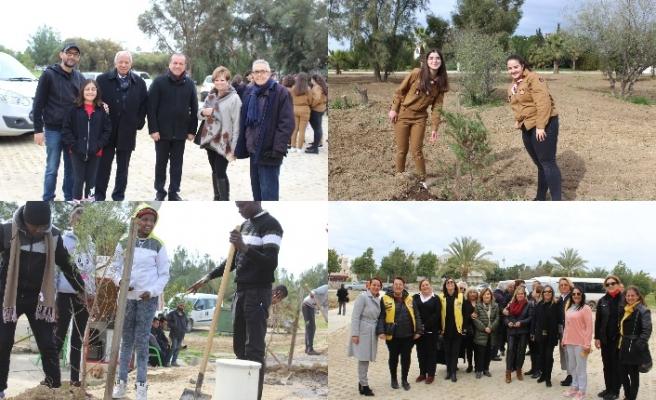Kurucu Cumhurbaşkanı Rauf Raif Denktaş'ın anıt mezarına fidan dikildi