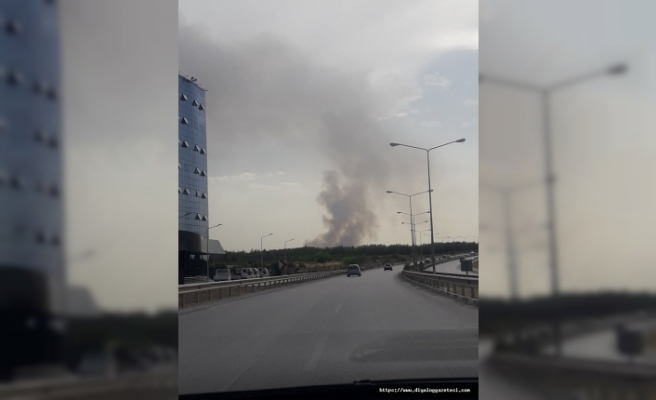 Ara bölgede yangın çıktı