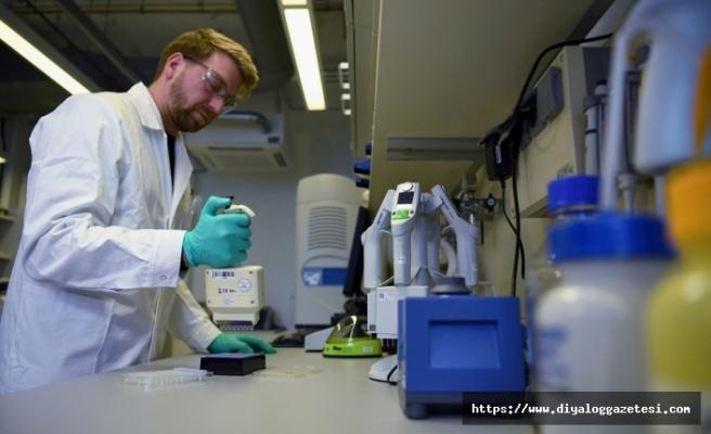 Coronavirüs aşısı testleri başladı
