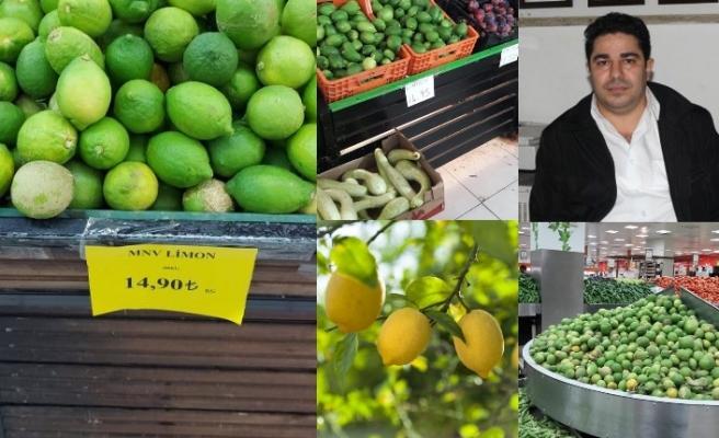 Limon üretiminde de büyük başarı