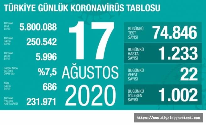 Türkiye'de vaka sayısı250 bini geçti
