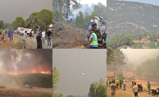 38 ilde toplam 163 orman yangını çıktı