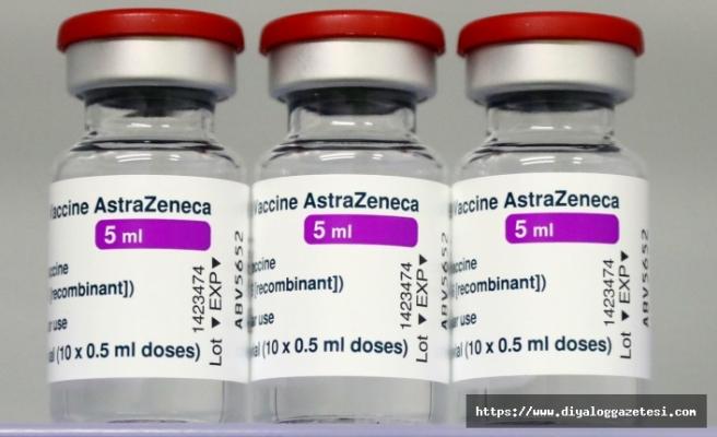 50 bin adet aşı Mısır'a gidiyor