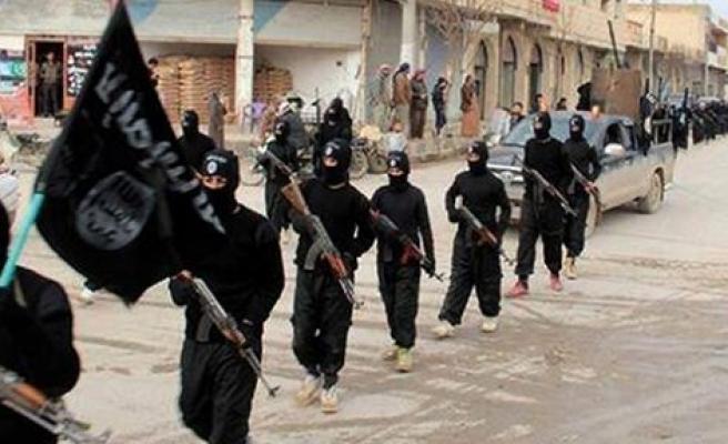'IŞİD'in yüzde 10'u Türk'