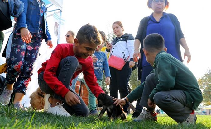 Tekirdağ'da hayvan sevgisini arttırmak ve sokak hayvanlarına sahip çıkılmasını sağlamak amacıyla etkinlik düzenlendi