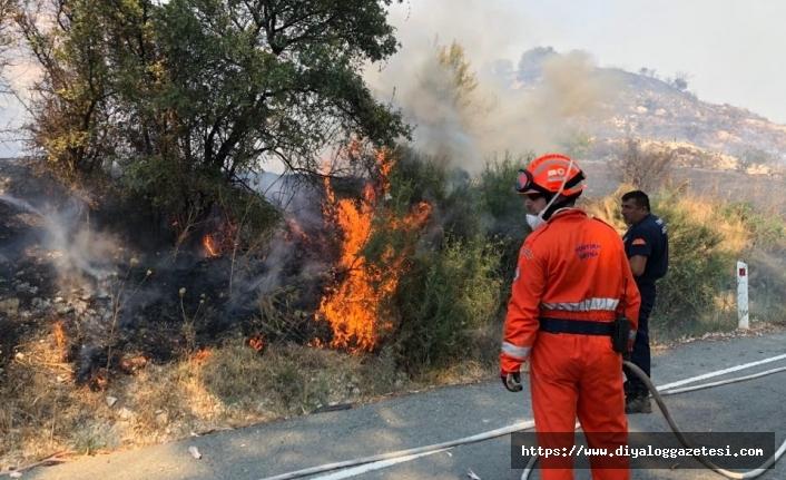 Güney Kıbrıs'ta yangınlar artıyor