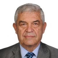 Taner ERGİNER